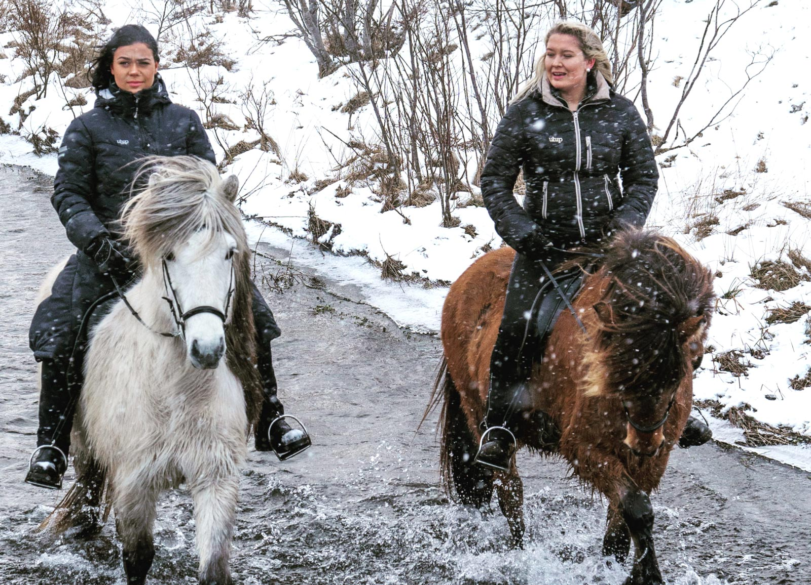 Mr Iceland - girls on winter horse riding tour