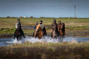 Mr Iceland - horse adventure