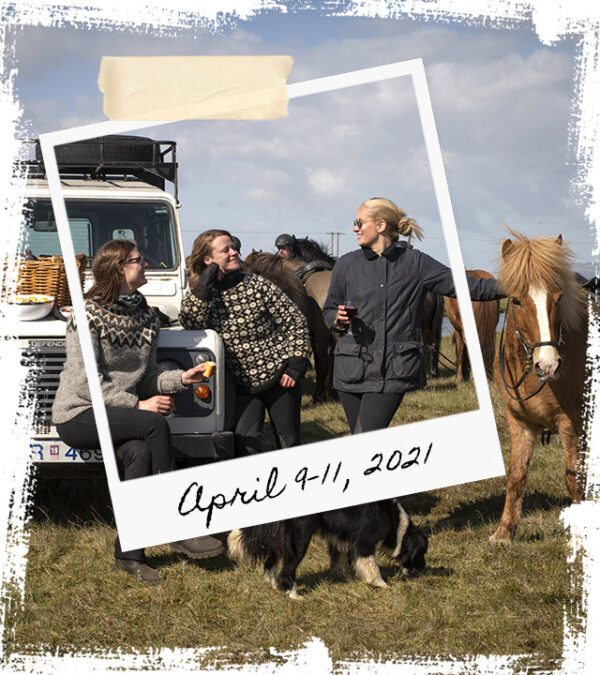 Mr Iceland - horse retreat April 9-11 2021