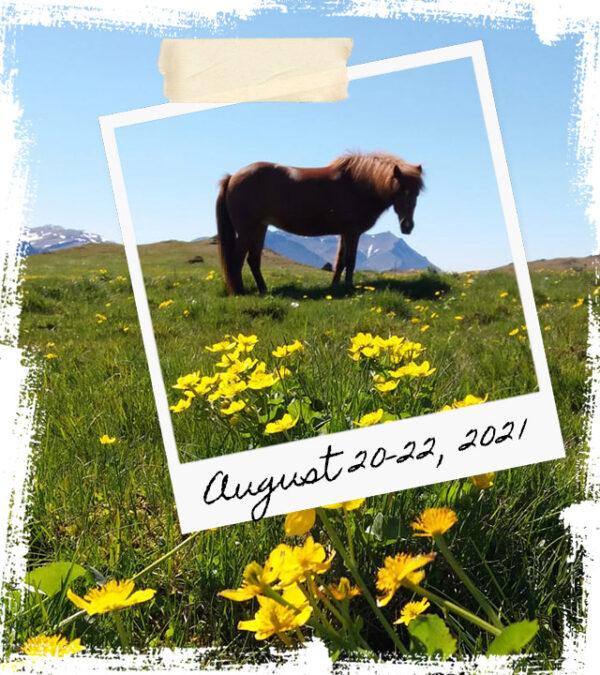 Mr Iceland - horse retreat August 20-22 2021