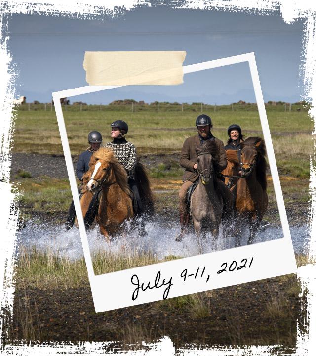 Mr Iceland - horse retreat July 9-11 2021