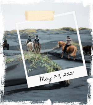 Mr Iceland - horse retreat May 7-9 2021
